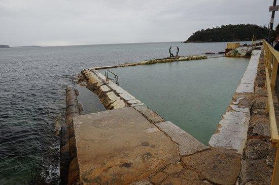 Manly Scenic Walkway: coastal poll
