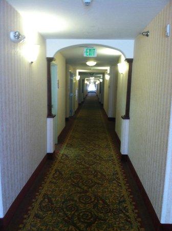 Comfort Inn & Suites Rock Springs : Clean and well-lit hallways