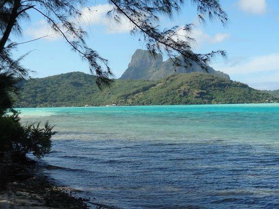 Bora Bora Ecolodge : vue du pied de notre bungalow