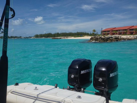 Bimini Sands Resort and Marina : View of the resort from the water