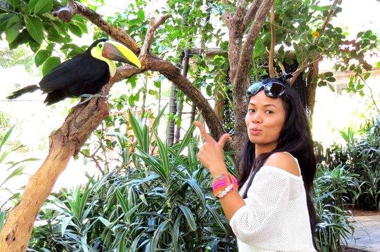 Go Tours Costa Rica - Day Tours : La Paz
