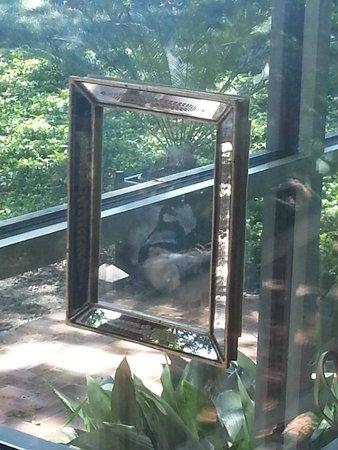 Rip Van Winkle Gardens: ghost