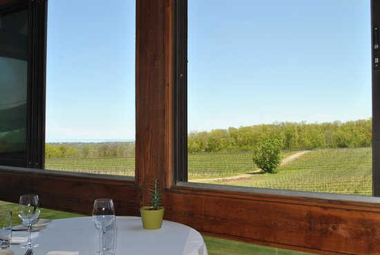 Vineland Estates Winery Restaurant: Opted for indoor seating, but with the windows open and views like this, it didn't matter!