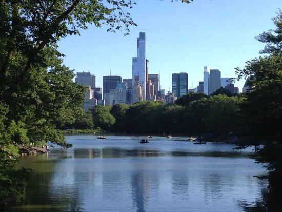 Manhattan Skyline: What a view from Central Park