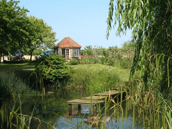 Scalby Hayes Bed & Breakfast: Summerhouse and pond