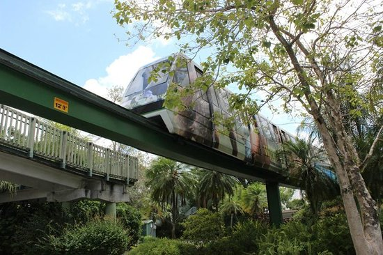 Zoo Miami: Trem