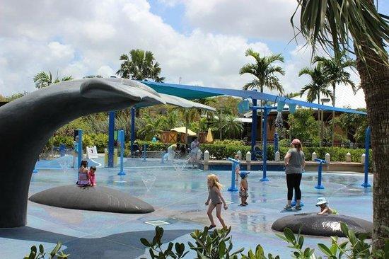 """Zoo Miami: Parquinho """"aquático"""""""