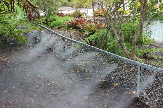 Zoo Miami: Local para descansar e se refrescar.