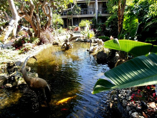 Best Western Naples Inn & Suites: angolo del lussureggiante giardino