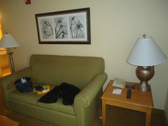 Homewood Suites Miami-Airport / Blue Lagoon: Living en la habitación