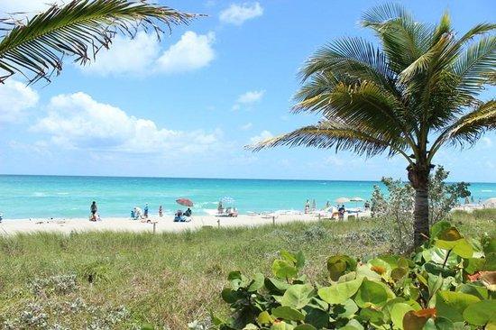 Hallandale Beach: Praia