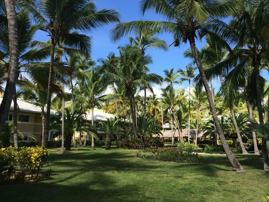 Grand Palladium Bavaro Suites Resort & Spa: outside of the rooms