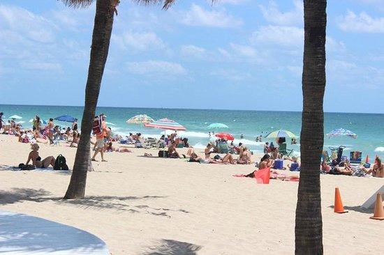 Las Olas Beach: Fort Lauderdale