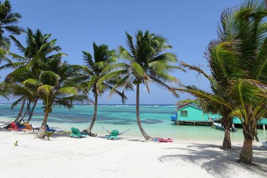 Tranquility Bay Resort: Paradise