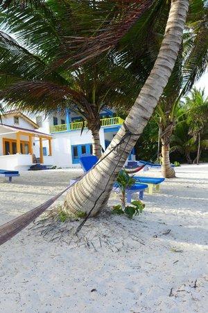 Tranquility Bay Resort: Cabana view