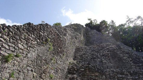 Ruines de Cobá : A Wave from the top