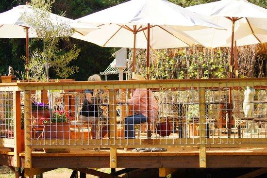 Myrtle Creek Botanical Gardens & Nursery: Organic Cafe Bloom