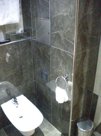 Hotel Danubia Gate Bratislava: Banheiro