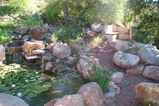 Sedona Views Bed and Breakfast : beautiful grounds