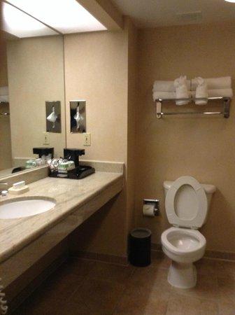 Hampton Inn & Suites Reagan National Airport: Room 703 bathroom