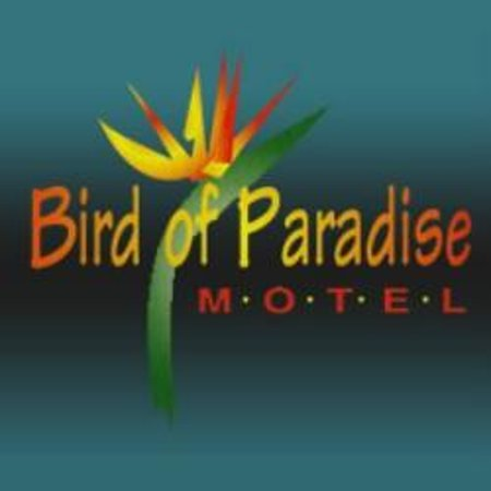 Bird of Paradise Motel