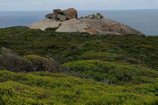 Parc national de Flinders Chase : View toward Remarkable Rocks