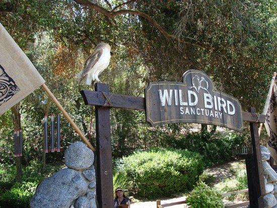 Pet Friendly Picture Of Myrtle Creek Botanical Gardens Nursery Fallbrook Tripadvisor