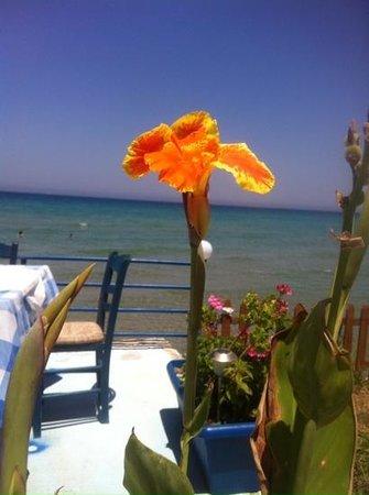 Ammoudi Fish Tavern: view from amoudi restaurant