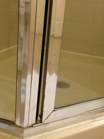 Marriott's Grande Vista: Shower Door
