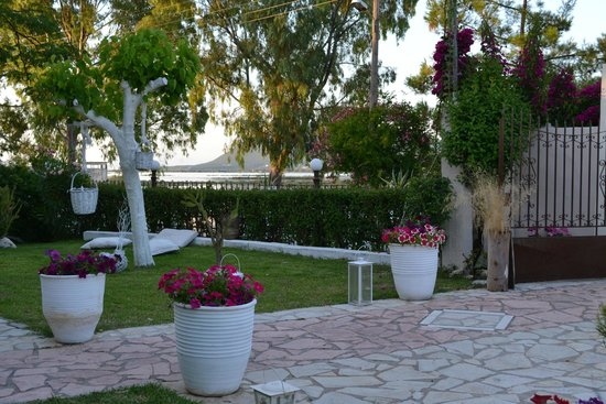 Villa Olga Hotel Apartments & Studios: garden3