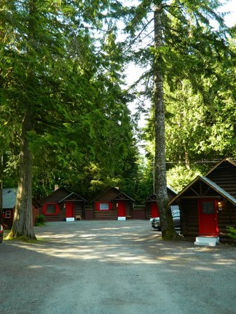 Gateway Inn & Cabins: Like staying in the park!