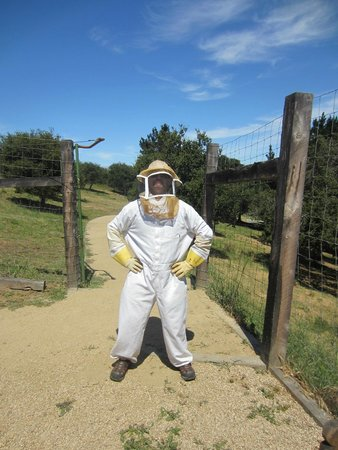 Carmel Valley Ranch : Ready for the Bee experience