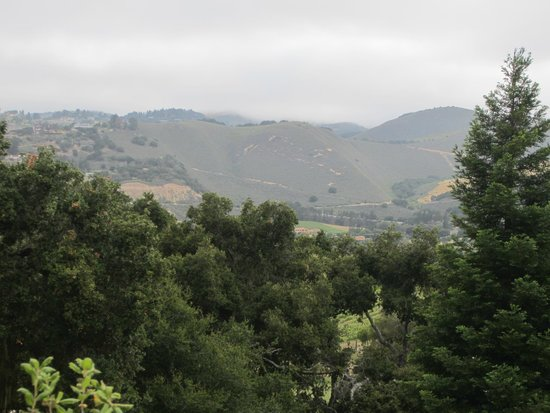 Carmel Valley Ranch: view from our room