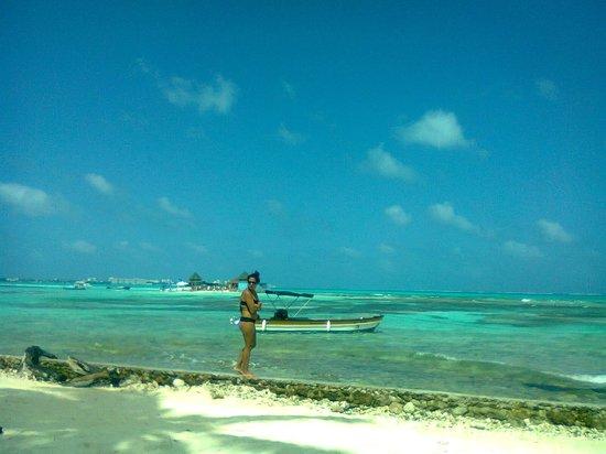 San Andres Diving & Fishing: Excursión de mantarayas
