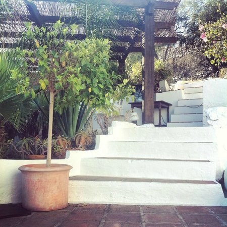 Hotel La tartana: terraza