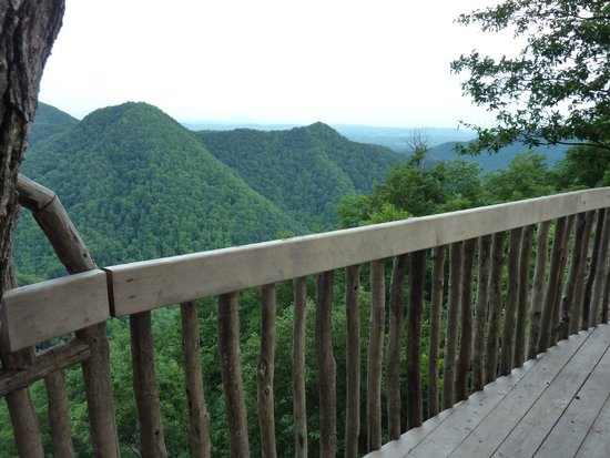 Primland : View from a treehouse room