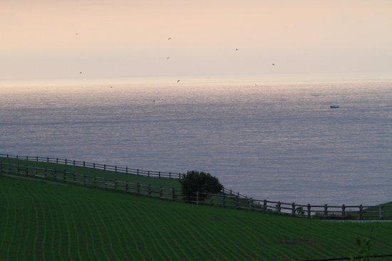 Navia, Spanien: Desde la ventana de la habitación Golondra