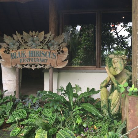 Lost Iguana Resort & Spa: Restaurant