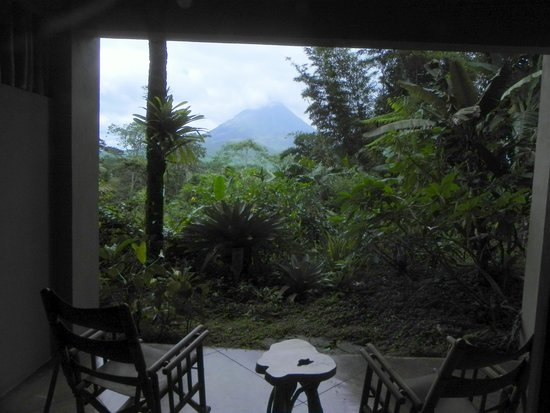 Lost Iguana Resort & Spa: The view from the room