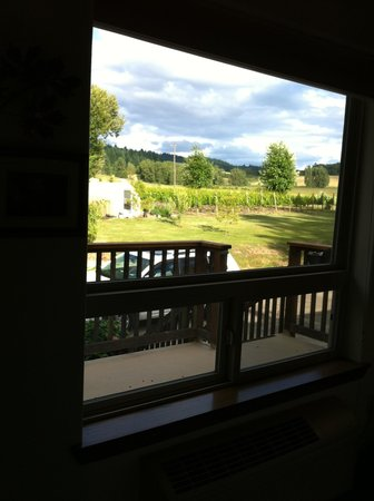 Lobenhaus Bed & Breakfast & Vineyard: View from Maple Room