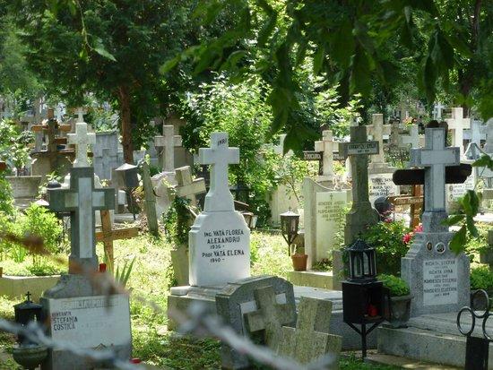 Bellu Cemetery: Lovely.