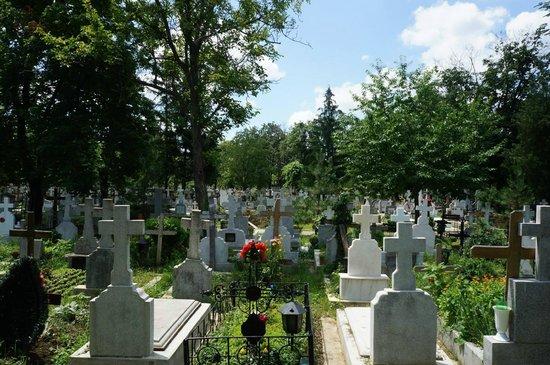 Bellu Cemetery: Impressive.