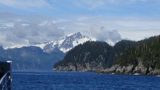Kenai Fjords Tours: View from the boat.