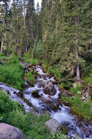 Wheeler Peak Wilderness Area: Wheeler Peak