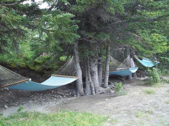 Old Entrance B 'n B Cabins & Teepees : Hammocks on the river bank