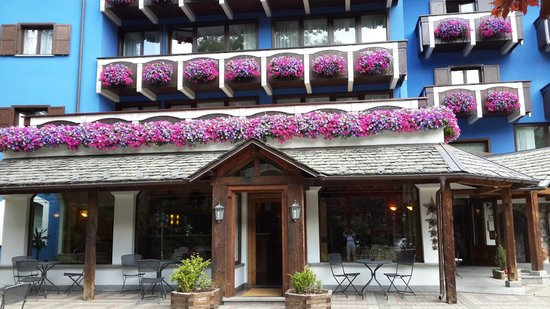 Hotel Residence Baita Clementi : Flowers on every balcony to a background of sky blue