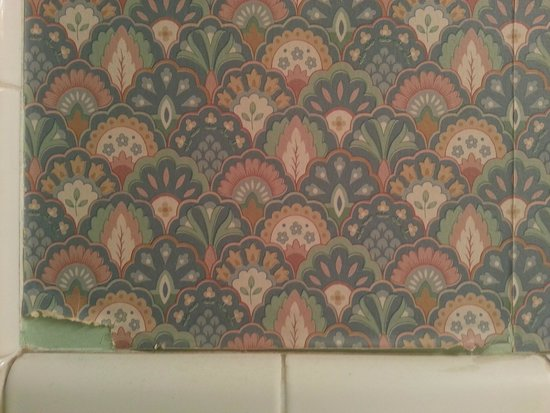 Bardstown Parkview Motel: The Bathroom Wallpaper