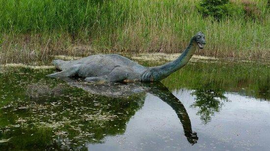 Loch Ness: Nessi gefunden