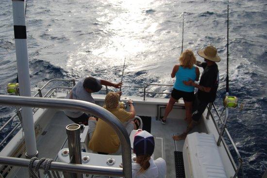 Lahela Sportfishing: Mahi Mahi