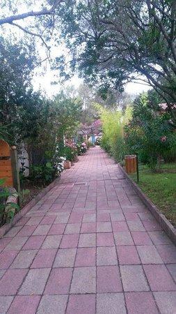 Bungalow Club Village: Vialetto Buganville